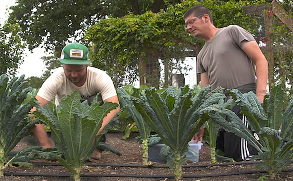 Community First Garden