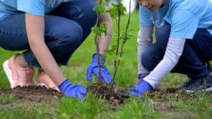 Ecosystem Restoration Camps - Episode 7