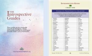 Introspective Guides Sample